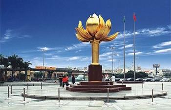 促销活动策划|花椒旅行卡-永久绽放的盛世莲花