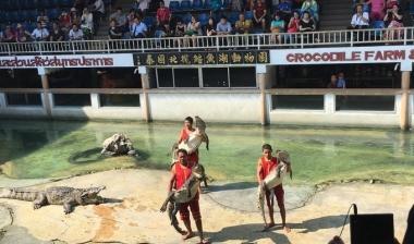 低成本活动策划|花椒旅行卡-世界最大的鳄鱼湖